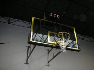 Pro Basketball for schools