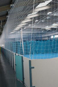 Netting and Rebound boards